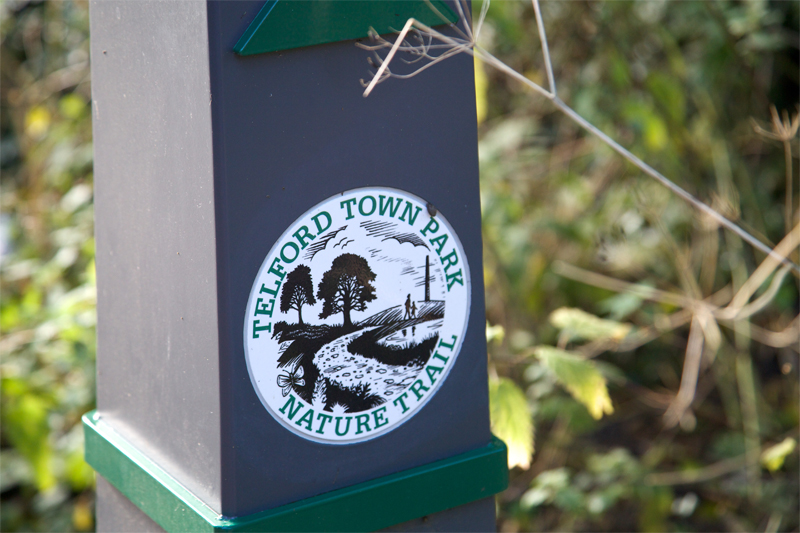 Image of the Telford Town Park Nature trail